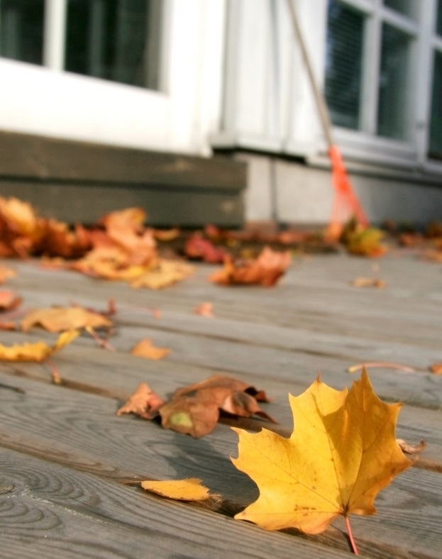 Autumn Home Preparations: A Homeowner's To-Do List For Fall