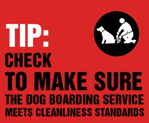 How To Find Dog Boarding Services