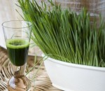 An Introduction To Jamba Juice Wheat Grass