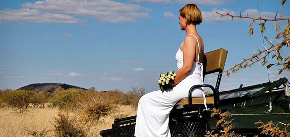 Why You Should Choose Safari-Style Wedding And Honeymoon