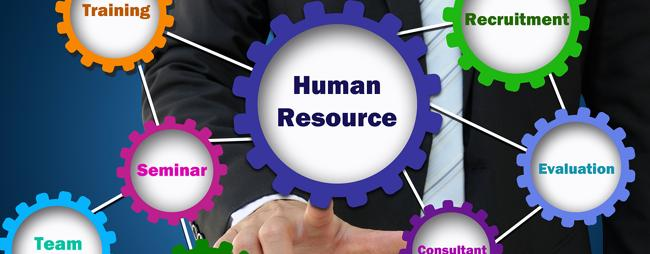 Human Resources Strategies Assist Executives In Their Careers