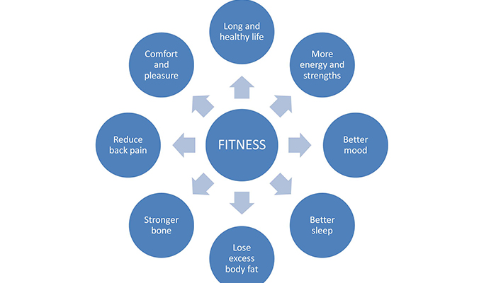 How To Achieve Body Shape Maintaining Fitness