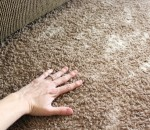 Using A Deodorizer For Your Carpet