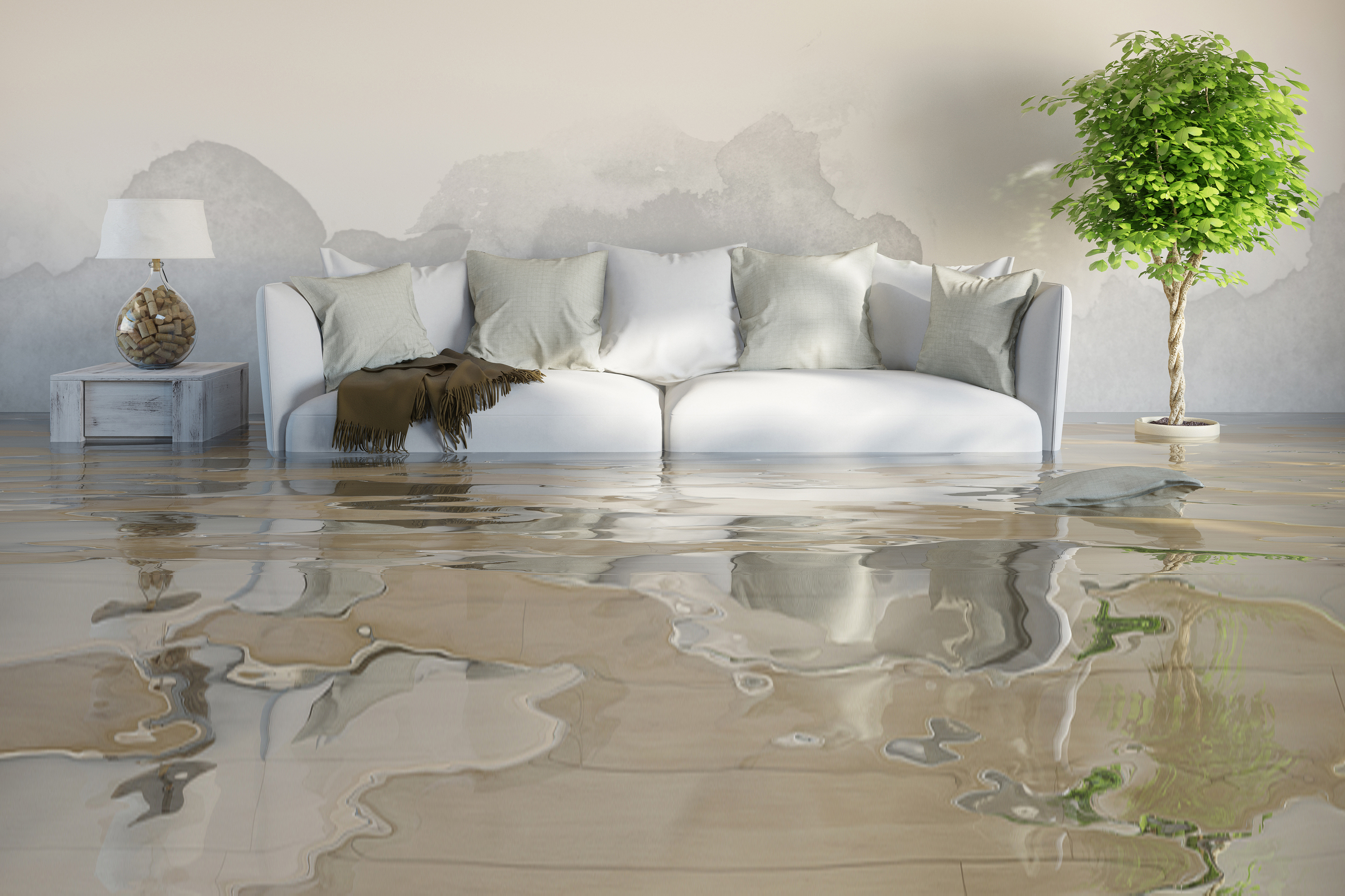 4 Major Home Threats That Can Cause Catastrophic Water Damage