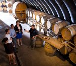 Looking For Best Wine: Top 8 Vineyards Around The World