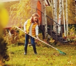Equipment You Can Use To Clean Your Lawn This Fall