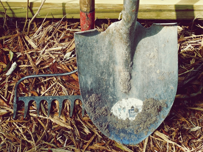 3 Necessary Pieces Of Equipment For Your Landscaping Project
