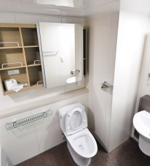 Lavatory Problems? How To Keep Your Toilet From Constantly Clogging