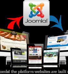 Anuj Mehta- Digital Marketer