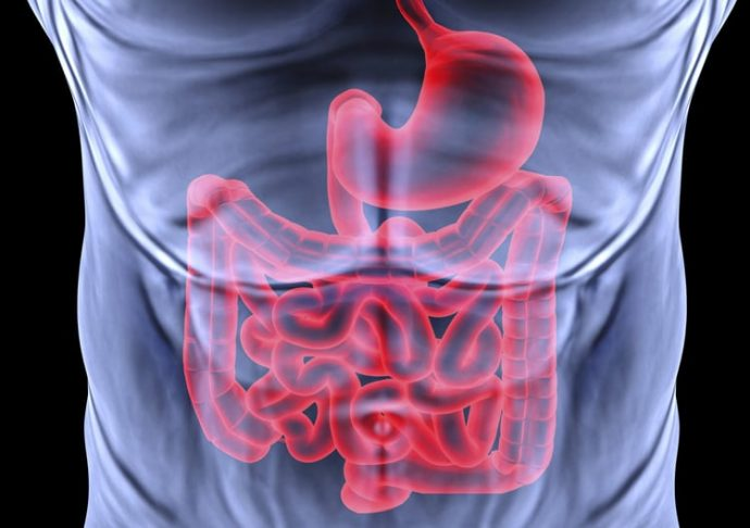 State-of-the-art Gastroenterology Services