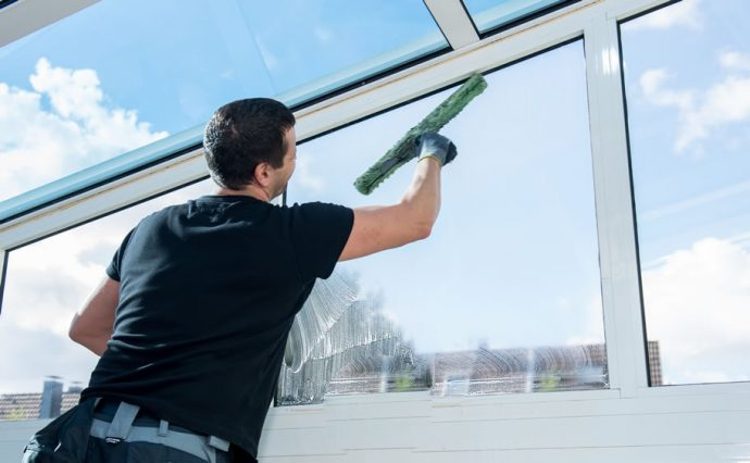 Removing Algae from Your Roof Professionally