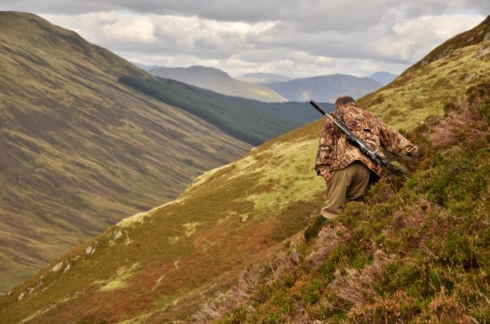 Ready For An Upgrade? Tips For Choosing Your New Favorite Hunting Rifle